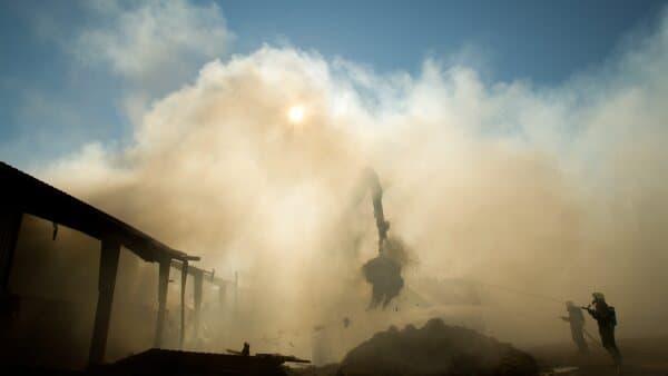 Gårdbrand: Grisene slap med skrækken