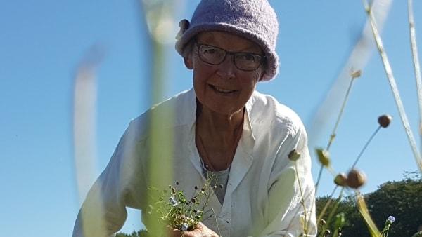 Få dage før sin død var Gunhild i marken for at høste hør: -Vi savner hende