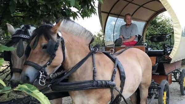 Sygeplejersken styrer stadig hestevognen. Hanne Windeleff fylder 75